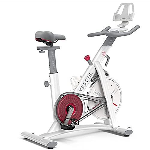 NBLD Bicicleta de Spinning Bicicleta de Ejercicio para Interiores, Gimnasio en casa Ejercicio aeróbico Bicicleta de Spinning, Bicicleta de Ejercicio estacionaria-Control magnético de Resistencia