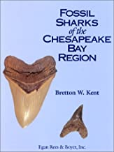 Best sharks in chesapeake bay Reviews