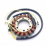 ZHANGYY Cambio rápido para Bobina DE ESTATOR para GENERADOR Yamaha XV700 XV750 XV1000 XV1100 Virago 1100 1986-1997