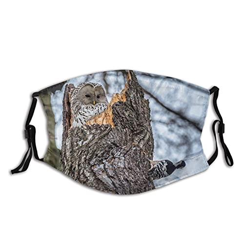 Máscara facial de moda cómoda naturaleza árbol tronco pájaros hueco búho carpintero a prueba de sol moda Bandana Headwear para la pesca