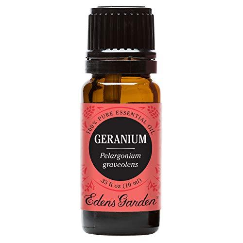 Edens Garden Geranium Essential Oil, 100% Pure Therapeutic Grade (Anxiety & Skin Care) 10 ml