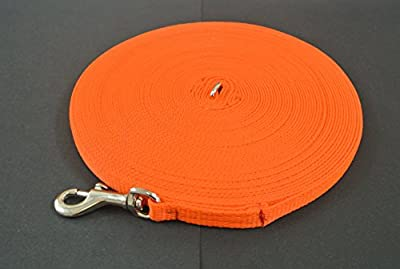 Church Products UK 10ft 3m Dog Training Lead Puppy Obedience Leash 13mm Strong Webbing In (Orange)