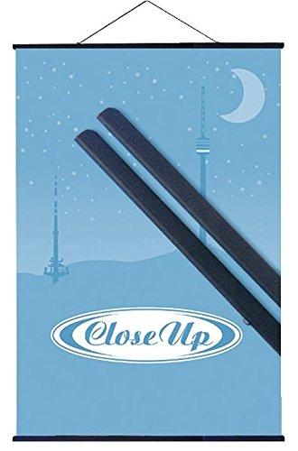 Close Up Kunststoff Posterleisten schwarz (70 cm) Poster-Aufhänger, Posterschienen, Plakatleisten, Klemmschienen (27,5 inch)