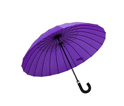LYYUMBRELLAS ZHDC® Parapluie Blossom, Double Parapluie Droit Femme Renfort Coupe-Vent Parapluie Parasol (Couleur : Violet)