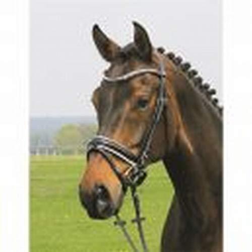 Hans Melzer Horse Equipment Trense Hagen, schwarz/schwarz unterlegt, Vollblut