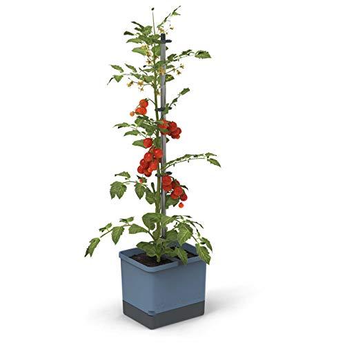 Tom Tomato - Tomatentopf - 4,5 L Wassertank Bewässerungssystem - Rankhilfe - Befestigungshaken - 20 L Erdvolumen - Kletterpflanzen - Pflanzkübel Pflanzgefäß Blumentopf Pflanzturm (Blau)