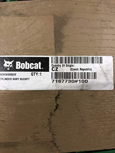 BAAQII 5PCS D250 Excavator Ignition Start Keys for Bobcat Case Skidsteer Ingersol Pollack Ditch Witch