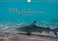 Unterwasserwelt der Malediven I (Wandkalender 2022 DIN A4 quer): Die vielfaeltige und faszinierende Unterwasserwelt der Malediven. (Monatskalender, 14 Seiten )