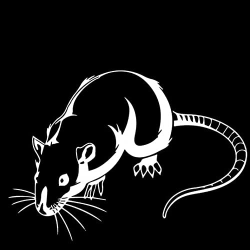 N\C Pegatinas de Coche de 16,4 CM * 11,7 CM, decoración de Ratas de Dibujos Animados, Pegatinas de Pared Impermeables Autoadhesivas, calcomanías para Coches, Nevera, decoración de Cocina (3 Piezas)