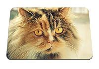 22cmx18cm マウスパッド (猫ふわふわマズルを発見) パターンカスタムの マウスパッド
