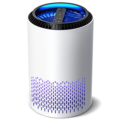 DOUHE Air Purifier for Home Air Filter Hepa Filter with UV Light, Portable Air Cleaner for Bedroom, Add Essential Oil Groove Design, Remove 99.97% Smells Dust Smoke Pollen Pet Hair Allergies