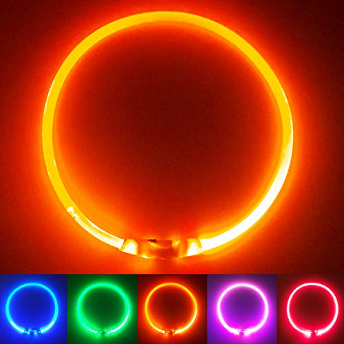 PetSol LED Leuchthalsband für Hunde USB Aufladbar LED Hundehalsband Stück hundehalsband Leuchtend Wiederaufladbares und Längenverstellbareres mit DREI Beleuchtungsmodi für Hunde und Katzen (Orange)