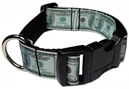 100 Dollar Bill Money 1