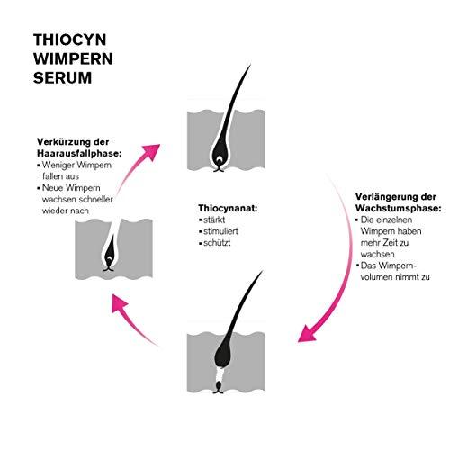 Thiocyn Wimpernserum & Augenbrauenserum - Wimpernseren & Augenbrauenseren
