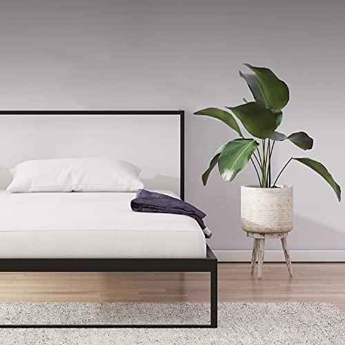 Signature Sleep Memoir 6' High-Density, Responsive Memory Foam...