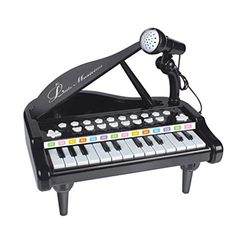 WZCC Educational Toys, Remote Control Car Toys?Piano Keyboard Toy for Kids,1 2 3 4 Year Old Girls First Birthday Gift,24 Keys Multifunctional Musical Electronic Toy Piano for Toddlers a