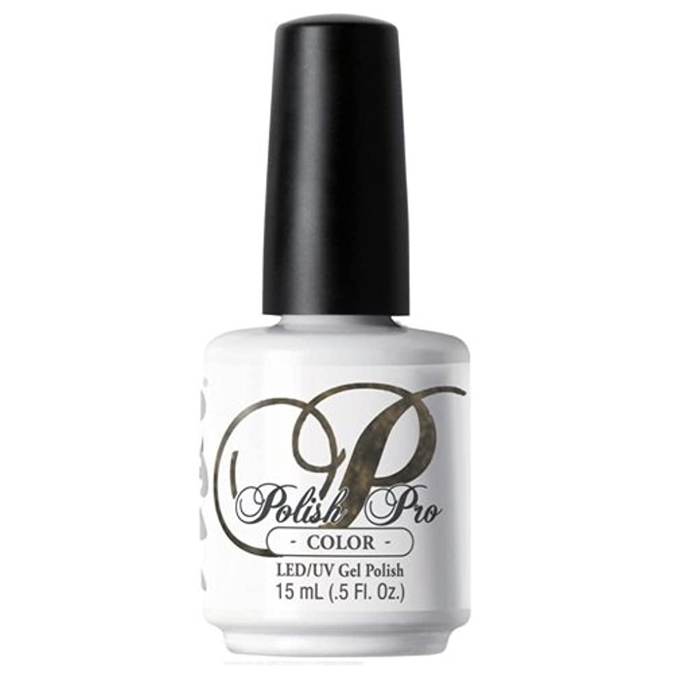 赤字航空機寸前NSI Polish Pro Gel Polish - Gypsy Soul - 0.5oz / 15ml