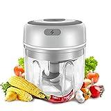 Gintan Elektrisch Zerkleinerer Küche,250ML Mini Knoblauchhacker Gemüsezerkleinerer Elektrisch Zwiebelschneider mit 3 Scharfen Klingen für Knoblauch Gemüse Obst Fleisch Küchenmaschine