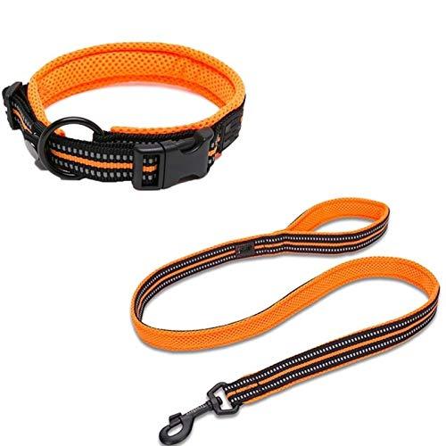 Cuello de perro y correa Set Large Pequeño Pequeño Medio reflexivo Soft Reflective Leave Leash 10256 (Color : Orange, Size : X-Small)