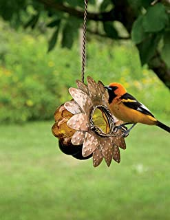 Best oriole jelly feeder Reviews
