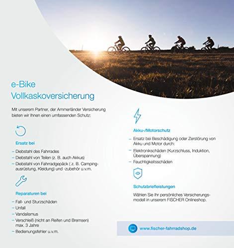 FISCHER Damen – E-Bike Trekking VIATOR 5.0i (2019), grau matt, 28″, RH 44 cm, Brose Mittelmotor 50 Nm, 36V Akku Bild 3*