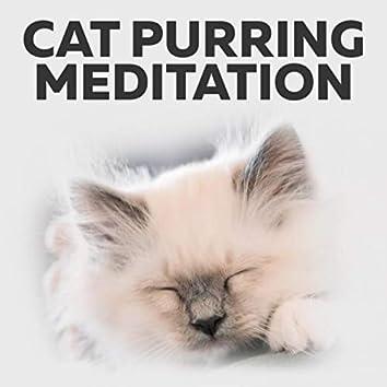 Cat Purring Meditation