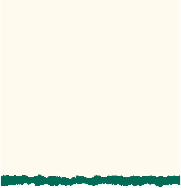Strathmore - Klappkarten mit Umschlag - 50 Stueck - - - 12,5 cm x 17,5 cm - Weiss mit Gruen B00755JEV4 | Moderater Preis  | Neuheit Spielzeug  | Quality First  f4859d