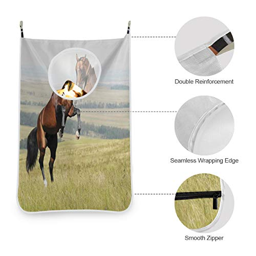 KIMDFACE Suspension Vêtements Sales Jouet Sac de Rangement,Bay Akhal Teke Horse Stallion élevant Le Champ de mammifères Nobles à l'extérieur,Oxford Sac à Linge Pliable Sac de Rangement