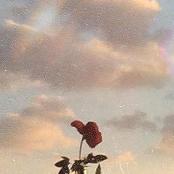 Růže (feat. VEVE)