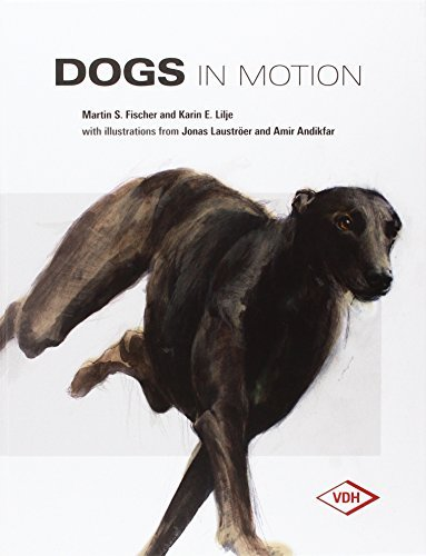 Dogs in Motion by Fischer (2016-02-24)