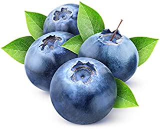 Organic Blueberry Juice Powder - Superfood Berry Antioxidant Supplement - Mix In Drinks, Shakes, Smoothies, Muffins, Cooki...