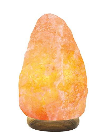 SourceDIY® - Lampada di sale in cristallo naturale dell'Himalaya con controllo pulsante e spina elettrica standard britannica, qualità premium e fine