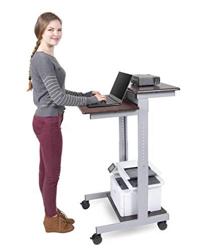 "Stand Up Desk Store Rolling Adjustable Height Two Tier Standing Desk Computer Workstation (Silver Frame/Dark Walnut Top, 24"" Wide)"