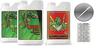 iguana bloom juice