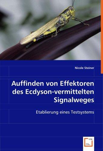 Auffinden von Effektoren des Ecdyson-vermitteltenSignalweges: Etablierung eines Testsystems