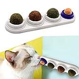 Katzensnack Süßigkeiten, Katzenleckspielzeug Molar Zahnen Snack Spielzeug mit solidem Candy Ball, selbstklebende Katzenminze Essbare Wand Ball...