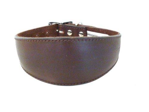 Leder-Halsband, einfarbig, 25 - 30cm, für Windhunde, Braun