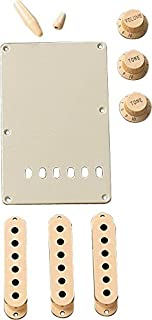 Best Fender Aged White Stratocaster Accessory Kit Review
