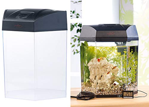 "infactory Beleuchtetes Panorama-Aquarium ""Hexagon"", Komplett-Set, 19 l"