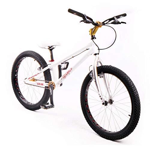 LJLYL 24-Zoll-Street-Trial-Bikes Climb-Bikes Springfahrrad-Biketrial, Aluminiumlegierungsrahmen und Vorderradgabel, mit Bremse (vorne und hinten MAGURA-2013 HS33)