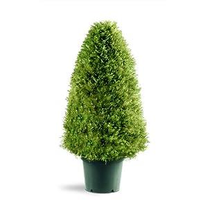 National Tree Company Artificial Shrub | Includes Pot Base | Upright Juniper – 30 Inch