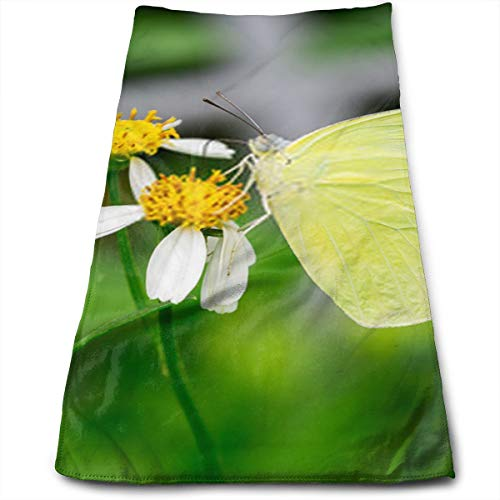 The Lemon Emigra Small Green Butterfly Eating On Flower Close Up Insect Picture Hand Towels Highly Absorbent for Hand,Face,Gym,Spa