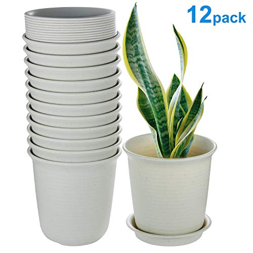 Plant Pots Indoor, 6 Inch Plastic Flower Planters with Drainage Hole and Tray, Pack of 12 - Plants Not Included, Beige