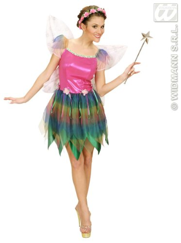 Rainbow Fairy With Dress, Wings