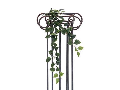 Europalms Filodendro Cespuglio Classico, 70cm, Verde