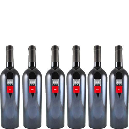 6 bottiglie per 0,75l -BUIO - CARIGNANO DEL SULCIS DOC