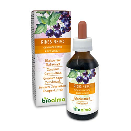 RIBES NERO (Ribes nigrum) Gemmoderivato analcoolico da gemme fresche NATURALMA | Estratto liquido gocce 100 ml | Integratore alimentare | Vegano
