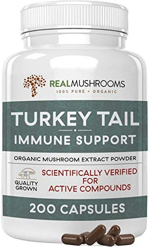 Real Mushrooms Turkey Tail Mushroom Supplements for Immune Support Wellness Vitality Vegan Non product image