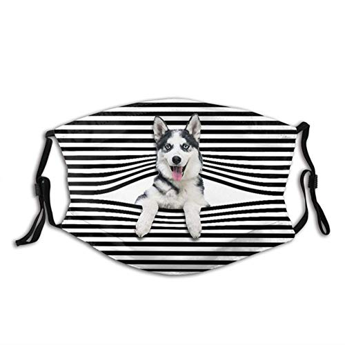 vipsung Funny Pug Puppy Dog-Face Cover with Filters, Reusable Washable Balaclava, for Men Women Adult Teens