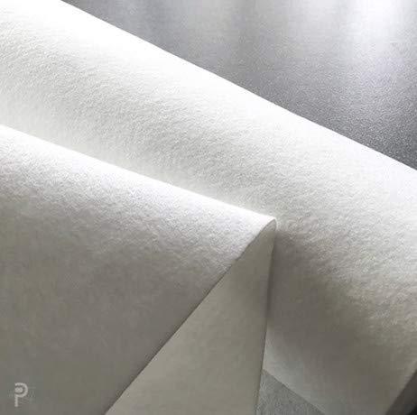 Atout Loisir Feutre géotextile 300 g/m², Long 100 m, Larg 2 m